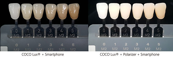 COCO-Lux_Natural-Daylight-Features.jpg