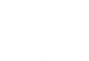 DDR.Live Logo - White.png