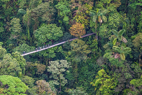 Mistico Park Puentes Colgantes: 10% de Descuento en Tour