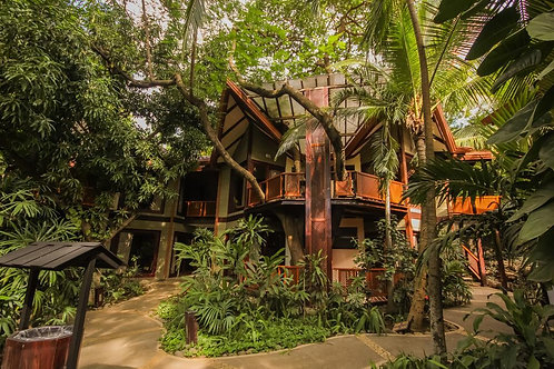 Bosque del Mar: Tarifa Especial $90 en Habitación doble + desayuno