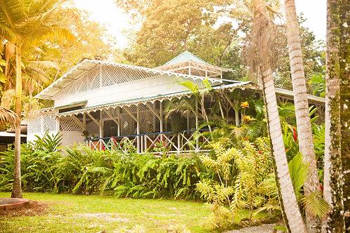 Villas del Caribe: 25% de descuento Habitación Superior & Villas Junior