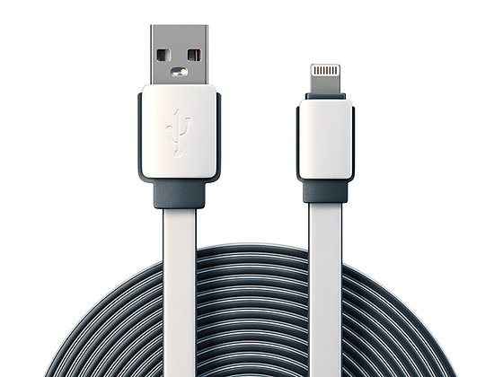 10' Lightning Cable