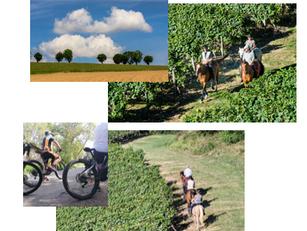 Itinérance douce: La Route Européenne d'Artagnan est ouverte !