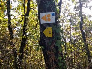 Itinérance douce dans le Gers : le CDT impulse et coordonne les actions !