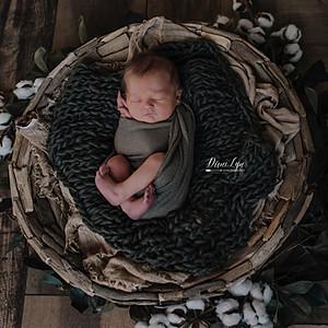 Layne | Newborn