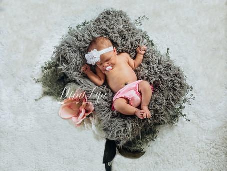 Alivia's Newborn Session