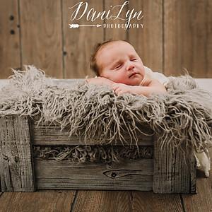 Isaiah's Newborn Session