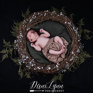 Colton Newborn Session