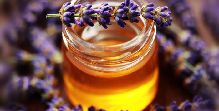 French Lavender and Honey (BBW Type)