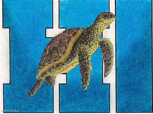 Blank Card - Hawaii Honu by Mo Kalaikai