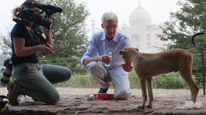Filming in India: How to Stop Worrying and Start Filming in 7 Steps - Part 2