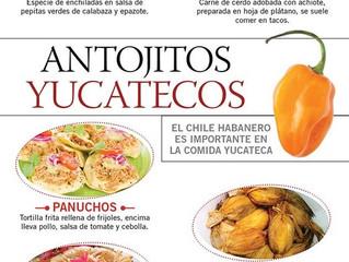 Gastronomía Yucatán