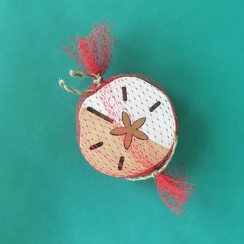 Sand Dollar Coasters by Lizzee Solomon