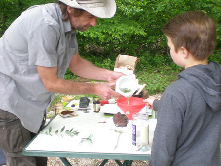 Préparer ses macérats de plantes après récolte,