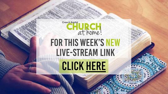 Live link.jpg