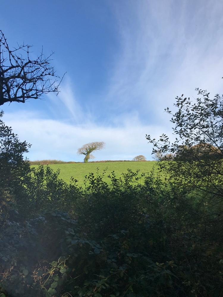 holsworthy-landscape.JPG