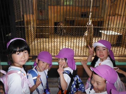 5月 4・5歳児 園外保育