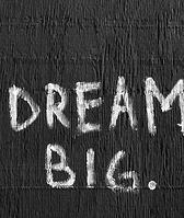 dream big photo.png