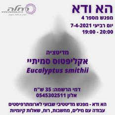מדיטציה עם שמן אתרי אקליפטוס סמיתיי
