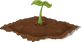 plants-576558.png