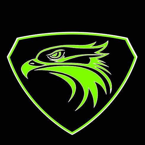 Hawks Shield.jpg