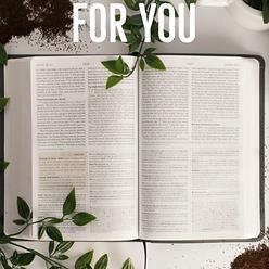 BIBLICAL STUDY TOOLS.png