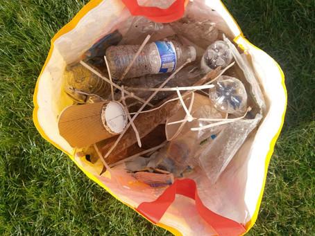 Litter Picking Good