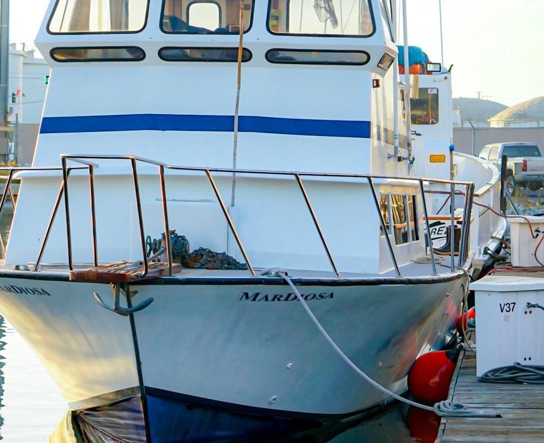 Boat Bow.jpg