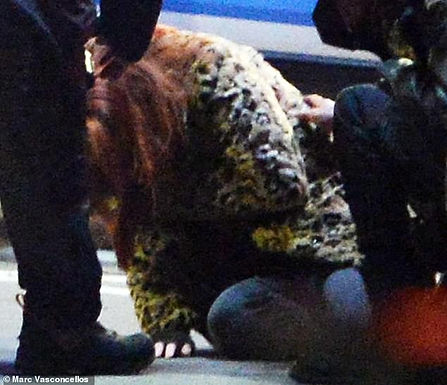 """Jennifer Lawrence hurt after a stunt went wrong during filming """"Don't look Up"""""""