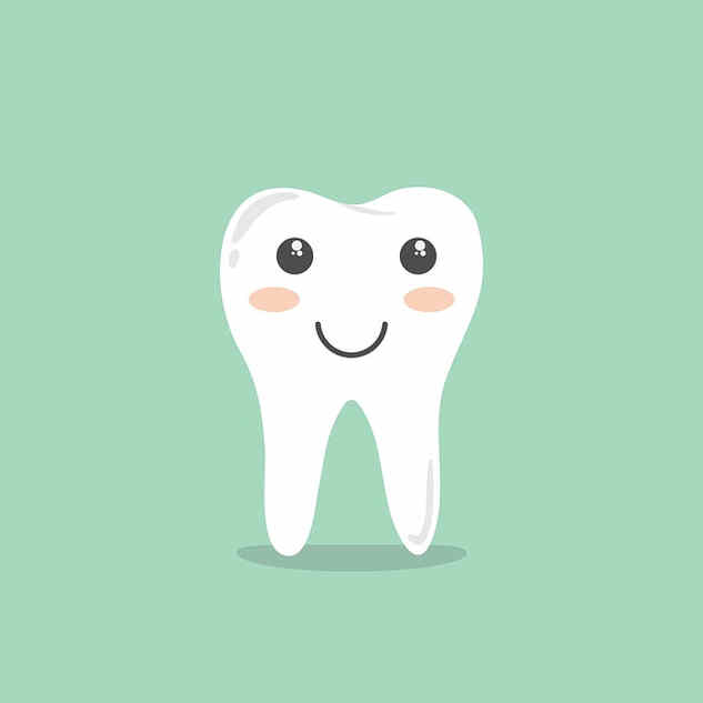 Dental Content Writer
