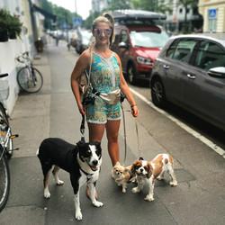 _KlaudiasTiersitting_Hundebetreuung_&_Ga