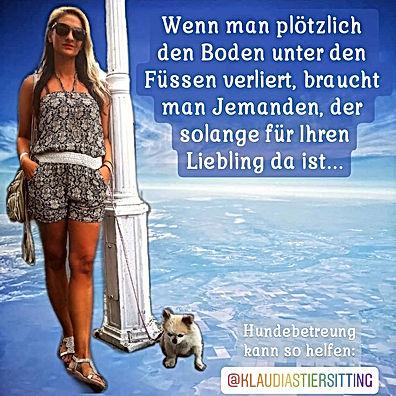 @KlaudiasTiersitting_-_Coach_Goldene_Mit
