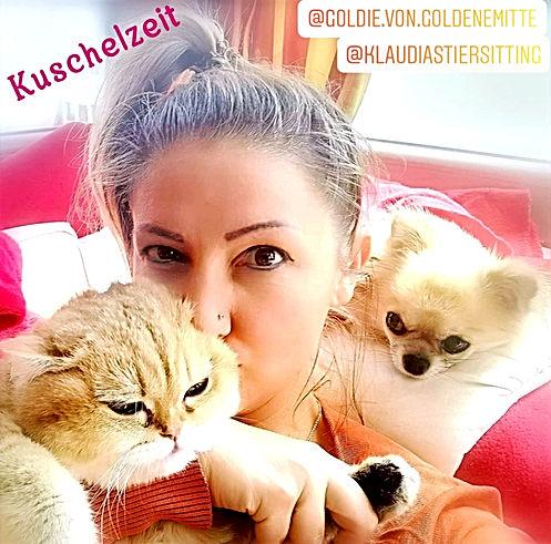 @KlaudiasTiersitting_-_Coach_Goldene_Mitte Katzenbetreuung Hundebetreuung Köln