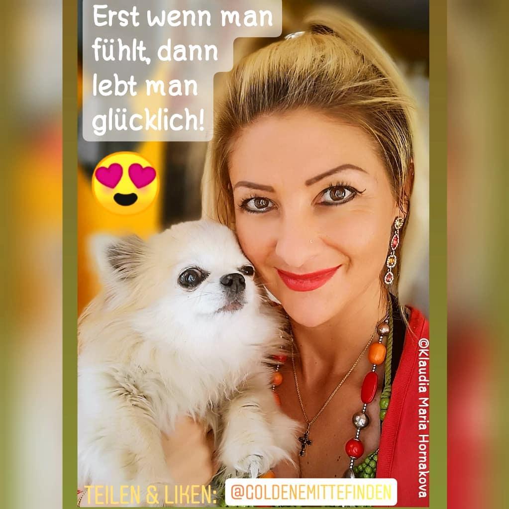 @KlaudiasTiersitting - Coach Goldene Mitte Finden mit Tieren - Hundebetreuung Huta Hundepension Chih