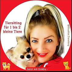 @KlaudiasTiersitting - Haustierbetreuung & Huta/ Hundepension nach §11 in Köln - Frau mit Chihuahua Hund auf dem Arm