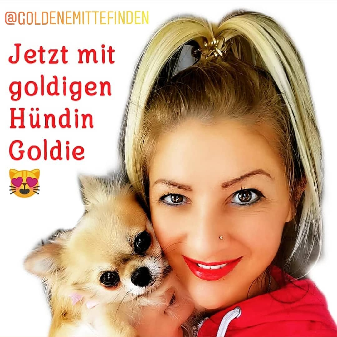 @KlaudiasTiersitting_Coaching_und_Hundeb