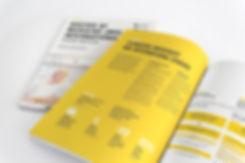 stduent brochure