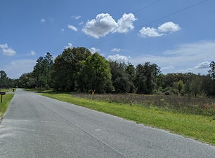 Southern Meadows 25e.jpg