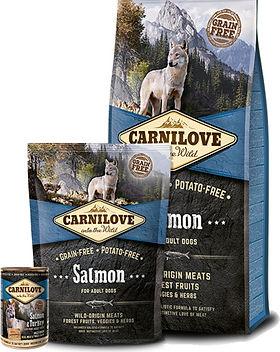 carnilove-salmon-adult.jpg