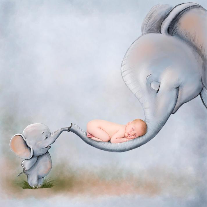 elephants family sell.jpg