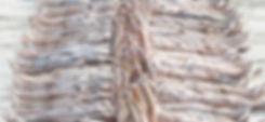BM.6.Cropped. Sticker.jpg