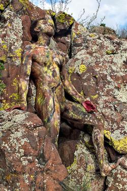 'Mountain Lichen'