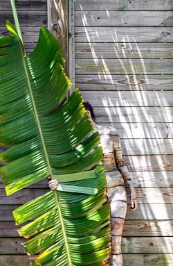 Bodypaintography: 'Palm Leaf'