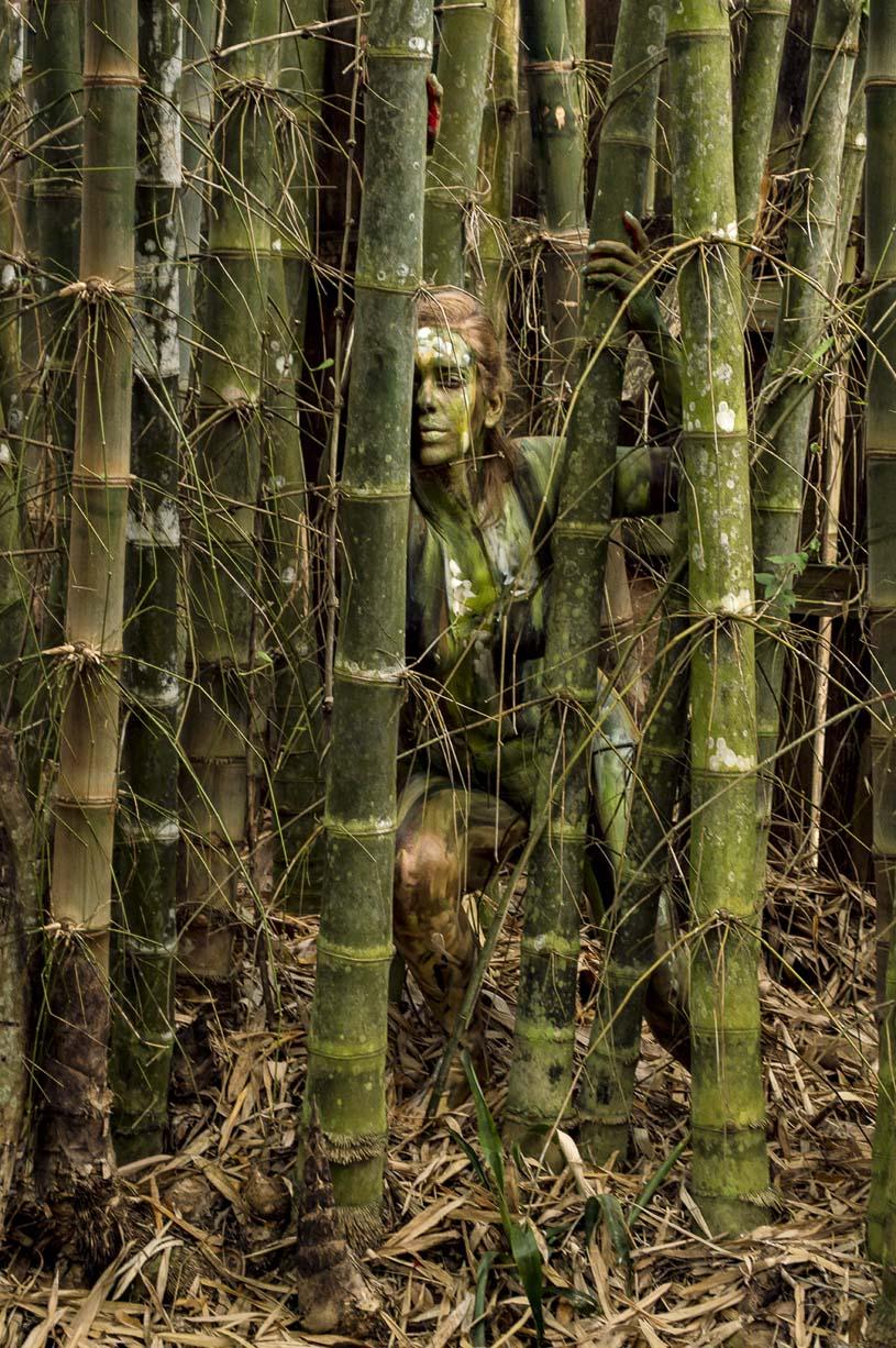 'Bamboo'