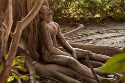 'Banyan Tree'