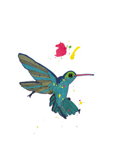Colourful hummingbird_web.jpg