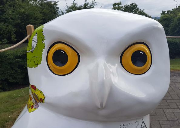 Gemini Twinned Too Yoo - Owls of Bath