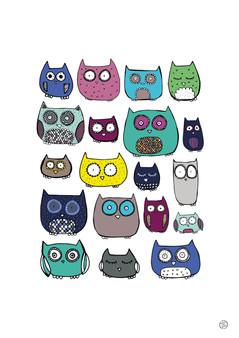 Colourful owl print