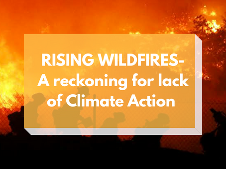 RISING WILDFIRES- A reckoning for lack of Climate Action