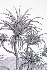 Bureaux aménagés comme à la maison chez DecoWorkers et Splandeed à Senlis, décorés par Coralie Vasseur, agence Carnets Libellule - détail sur le papier peint panoramique